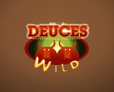 Deuces Wild Video Poker without House Edge